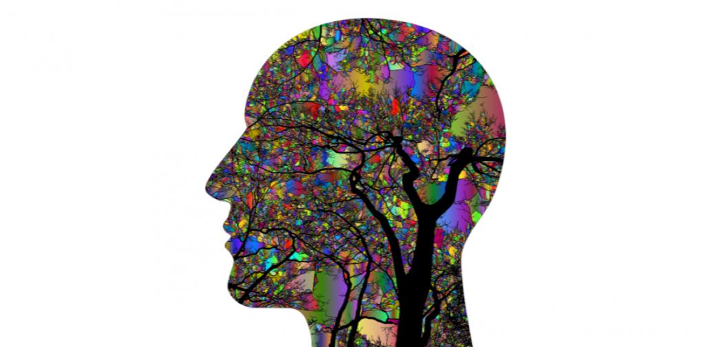Cervell